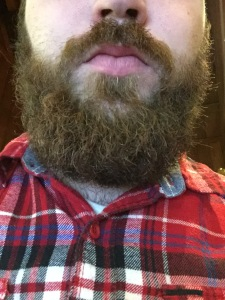 My Beard (not  shown: my face)